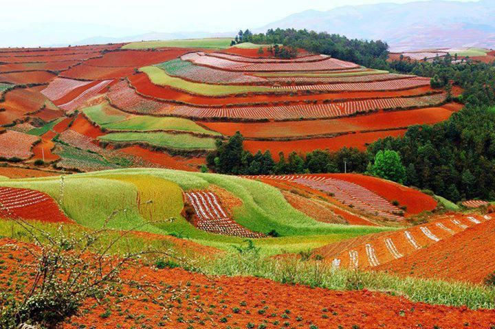 Colorful Hills Lexiaguo